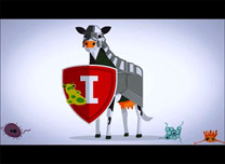 immunity_mv02.jpg