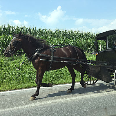 アーミッシュの馬車